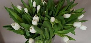 Fleuranne - Waremme - Bouquets